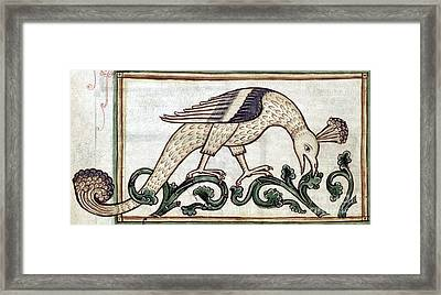 Phoenix, Legendary Creature Framed Print by Photo Researchers