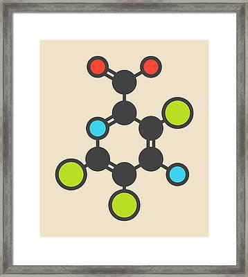 Picloram Herbicide Molecule Framed Print