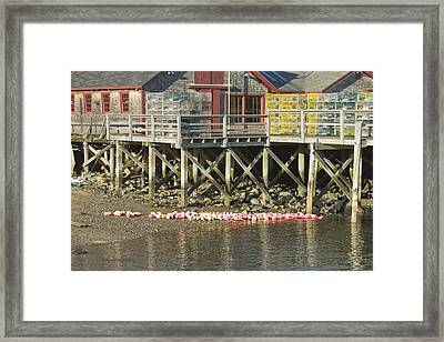 Pier In Tenants Harbor Maine Framed Print by Keith Webber Jr
