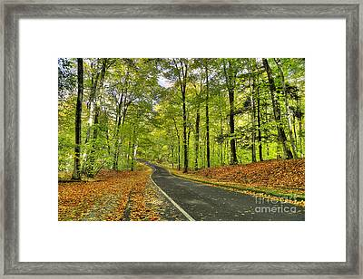 Pierce Stocking Scenic Drive In Fall Framed Print