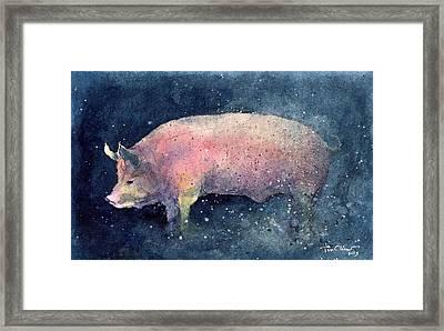Pig Framed Print by Tim Oliver