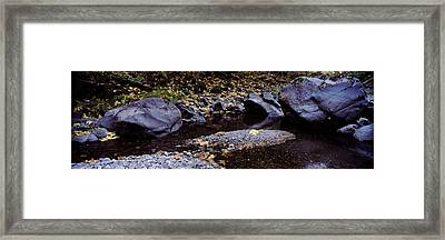 Pilot Creek In Autumn, Humboldt County Framed Print by Panoramic Images