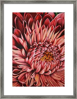 Pink Mum Framed Print