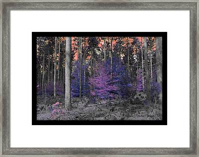 Framed Print featuring the photograph Pink Sky by Michaela Preston