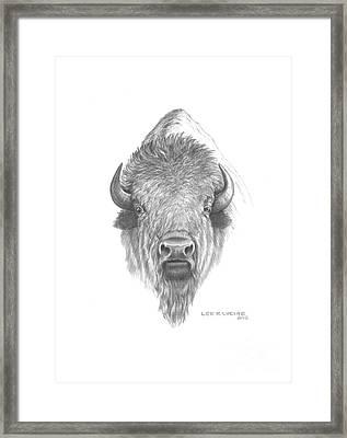 Plains Buffalo Framed Print by Lee Updike