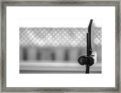 Plant Clip Framed Print