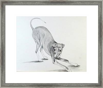 Framed Print featuring the drawing Play Time by Sharon Schultz