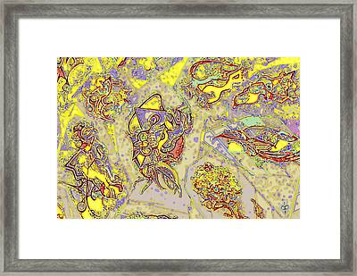 Framed Print featuring the mixed media Plumage by Doug Petersen