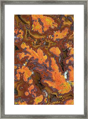 Plume Agate, Sammamish, Washington State Framed Print by Darrell Gulin