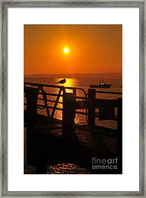 Plymouth Harbor Sunrise Framed Print by Catherine Reusch Daley
