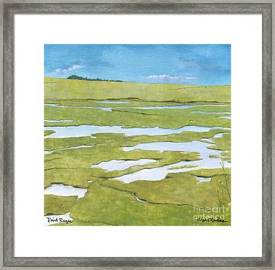 Point Reyes  Framed Print by Will Bullas