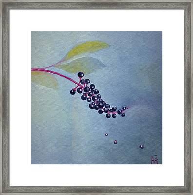Pokeberries Framed Print