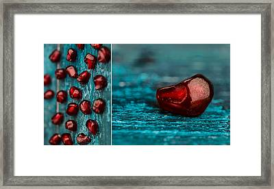 Pomegranate Collage Framed Print