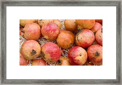 Pomegranates Framed Print by Tom Gowanlock