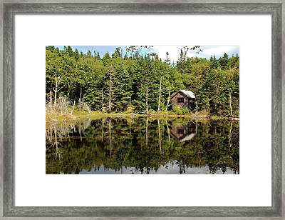 Pond Along The At Framed Print