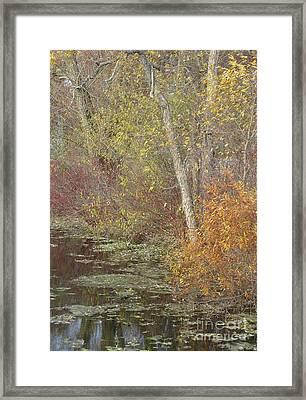 Pondside Pastel Framed Print