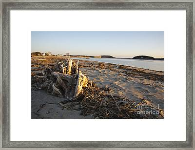 Popham Beach State Park - Phippsburg Maine Usa Framed Print by Erin Paul Donovan