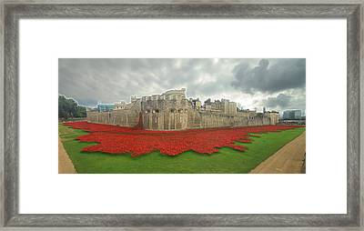 Poppies Tower Of London Collage Framed Print