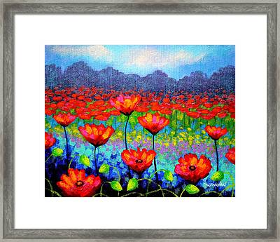 Poppy Vista Framed Print by John  Nolan