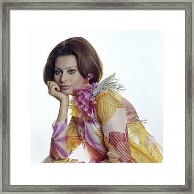 Portrait Of Sophia Loren Framed Print by Henry Clarke