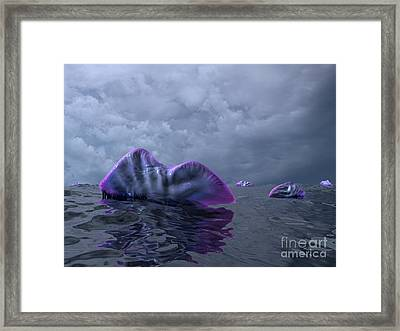 Portuguese Men-of-war, Artwork Framed Print by Walter Myers