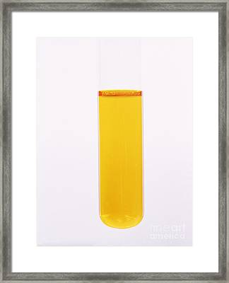 Potassium Dichromate Solution Framed Print
