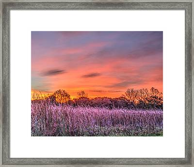 Illinois Prairie Moments Before Sunrise Framed Print
