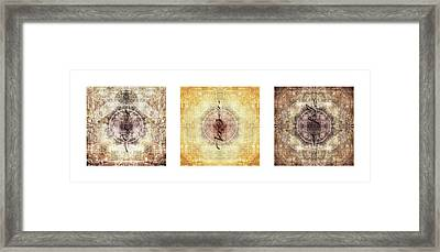 Prayer Flag Triptych Framed Print by Carol Leigh