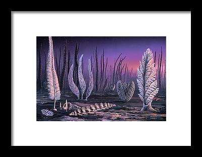 Biota Framed Prints