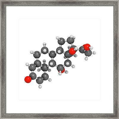 Prednisolone Corticosteroid Drug Molecule Framed Print by Molekuul