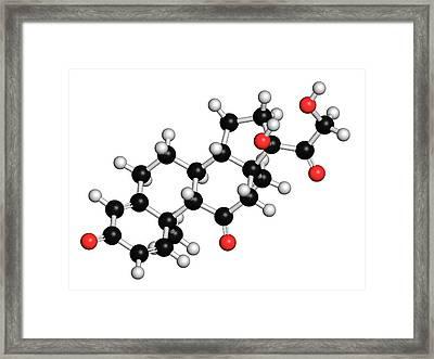 Prednisone Corticosteroid Drug Molecule Framed Print by Molekuul