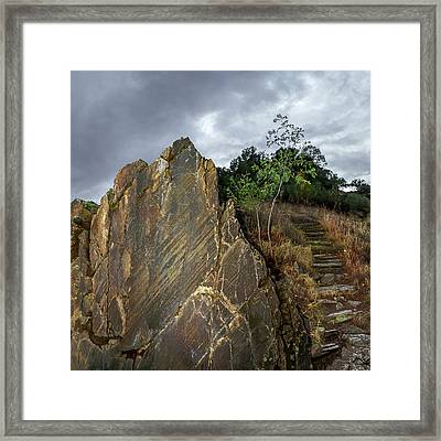 Prehistoric Rock Art Framed Print