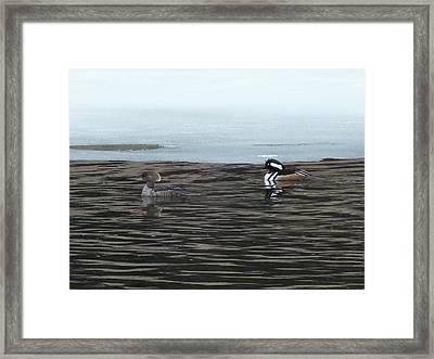 Framed Print featuring the photograph Pretty Ducks by Gene Cyr