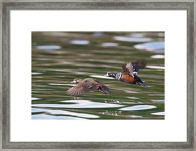 Prince William Sound, Alaska, A Pair Framed Print