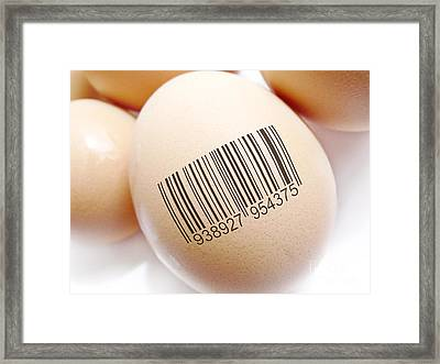 Product Identification Framed Print