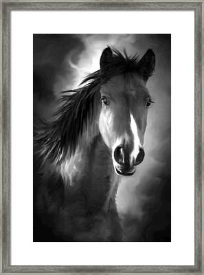 Profile Portrait Of A Horse Framed Print