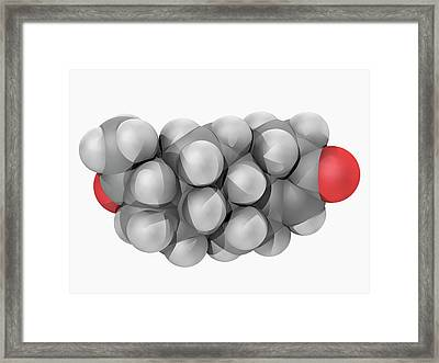 Progesterone Hormone Molecule Framed Print by Laguna Design/science Photo Library
