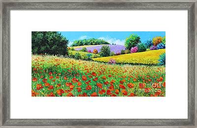 Provencal Flowers Framed Print by Jean-Marc Janiaczyk