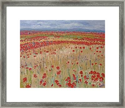 Provence Poppies Framed Print