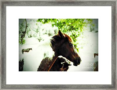 Provocation Framed Print