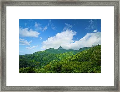 Puerto Rico, Luquillo, El Yunque Framed Print by Miva Stock