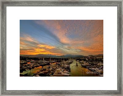 Puerto Vallarta Marina Framed Print by Nicola Fiscarelli