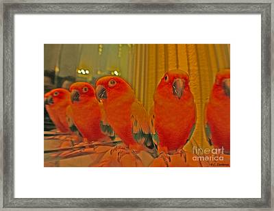 Purdy Peaches Framed Print by Rebecca Christine Cardenas