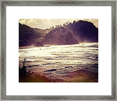 Purple Haze Framed Print by Marty Koch