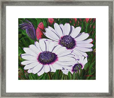 Purple Punch Framed Print