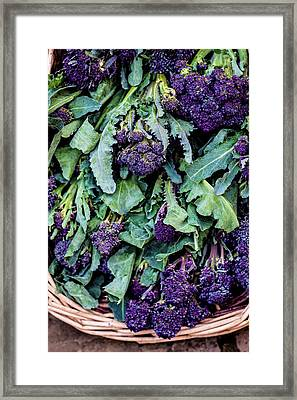 Purple Sprouting Broccoli Framed Print by Aberration Films Ltd
