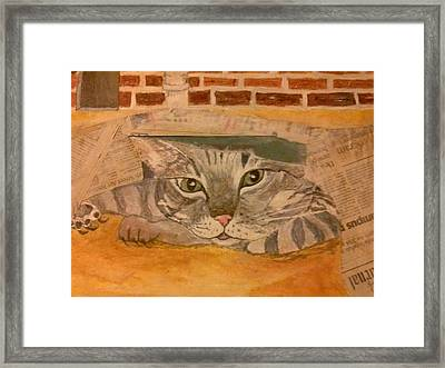 Pussy Cat's Play Day Framed Print by Michelle Reid