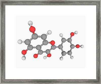 Quercetin Molecule Framed Print by Laguna Design/science Photo Library