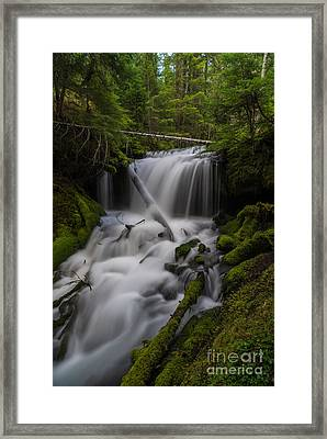 Quiet Falls Framed Print by Mike Reid