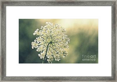 Quiet Moment Framed Print by France Laliberte